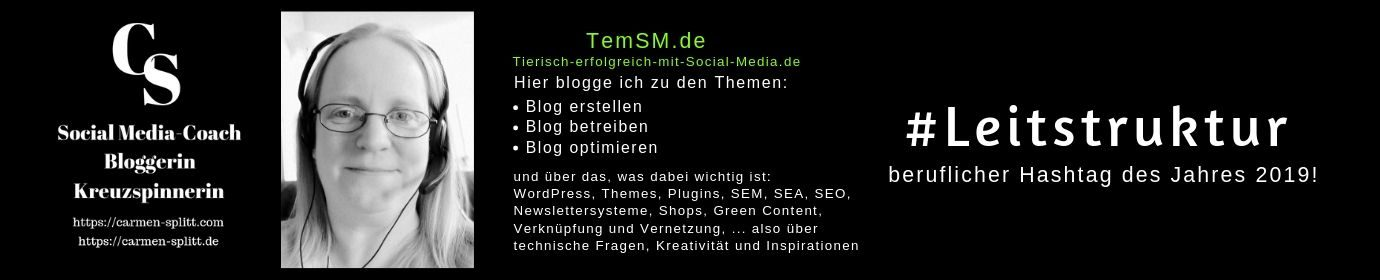 TemSM.de - entspannt bloggen lernen